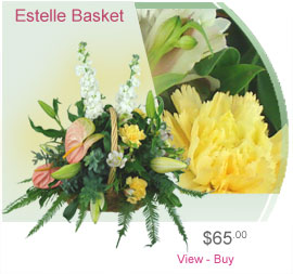 Estelle Basket