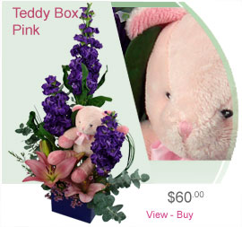 Teddy Box Arrangement