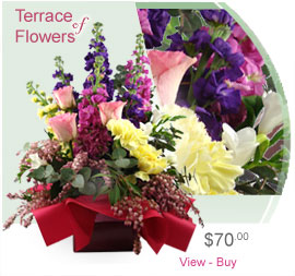 Terrace Of Flowers