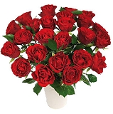 24 Stems Red    Deluxe or Premium Roses