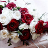 Pearl Roses Red & White