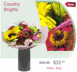 Country Brights
